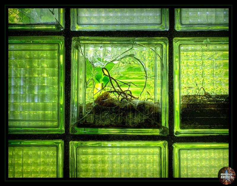 Abandoned State Hospital window - Matthew Christopher's Abandoned America
