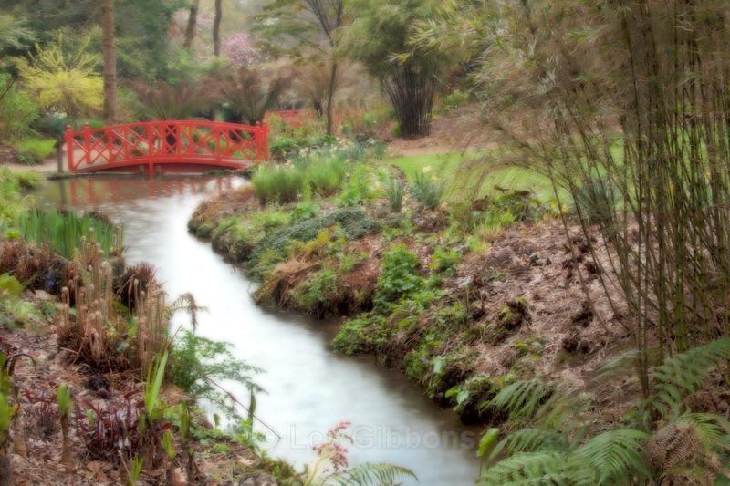 japanese bridge - abbotsbury - Dorset and the west country
