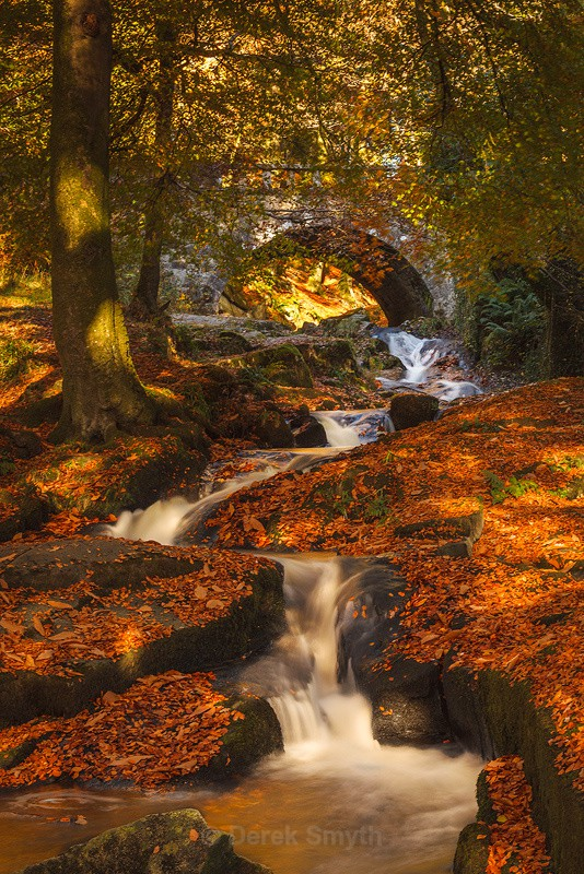 Glorious Autumn Colours By The Cloughleagh River