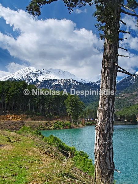 Doxa's Lake I Λίμνη Δόξας - Νότια Ελλάδα I South Greece