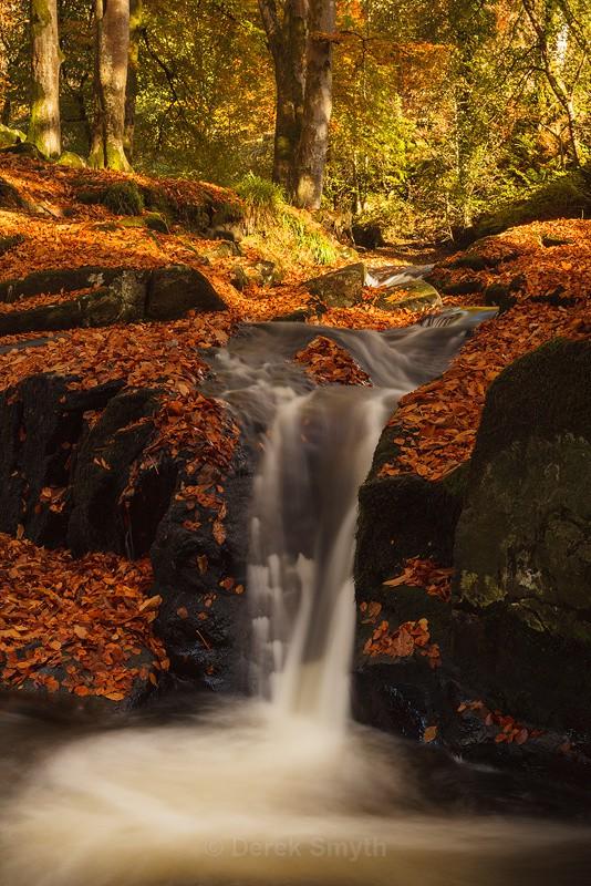 Autumn Fall On The Cloughleagh River