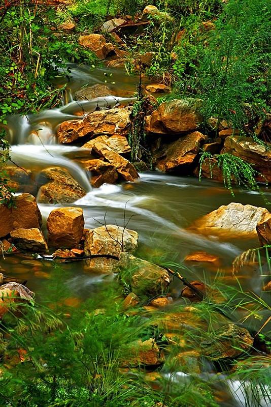 Morialta Stream1 - WATER - SALT OR FRESH PHOTOS
