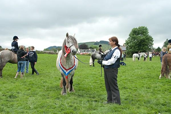 24 - Moniaive Horse Show 2010