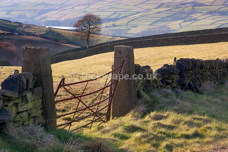 Cartworth Moor   Summer Wine Countryside   Yorkshire Landscape Photography