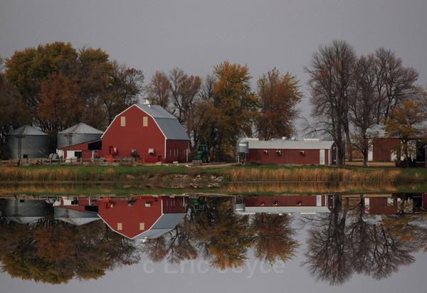 Autumn Farm Reflections - SW Minnesota