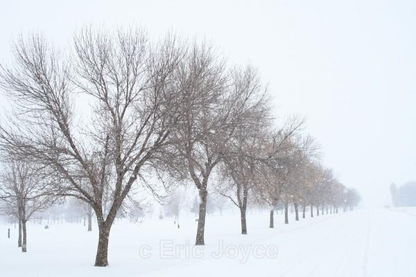 Golf Course Rd, Minneota - SW Minnesota