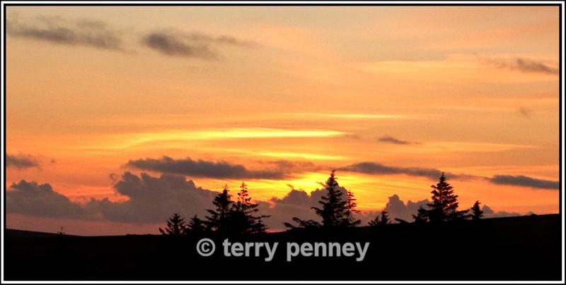 Nr Princetown, Dartmoor 2 - Devon