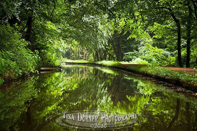 Canal Landscape from Forest of Dean Photos by Tina Dorner Photography, Forest of Dean and Wye Valley, Gloucestershire