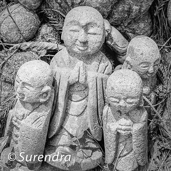 Nashinoki Jizo 12 - Jizo on Sado Island