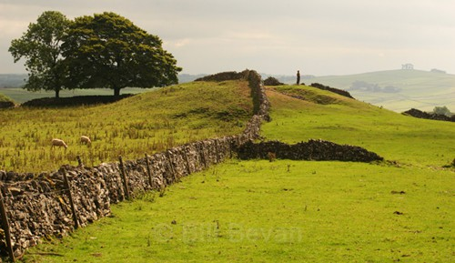 Pea Low Neolithic Tomb - Ancient Peakland