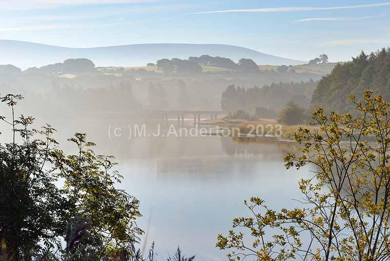 Burgage, Blessington Lake - Co.Wicklow.