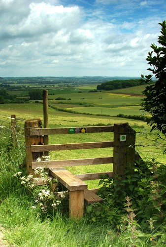 Country Stile - Traditional Landscapes