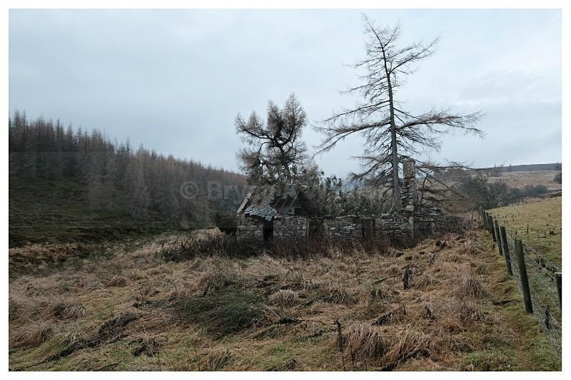 Bogmore - Landscapes