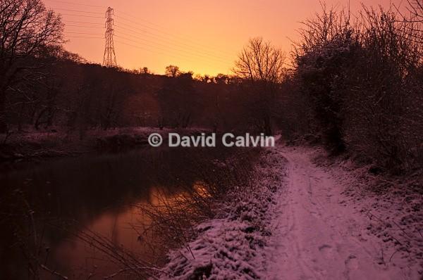 Orange Glow - Winter