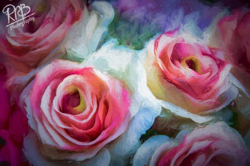 Roses - Digital Paintings