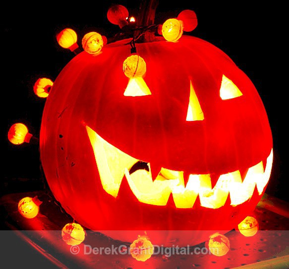 Jack-O-Lantern - Autumn Festival
