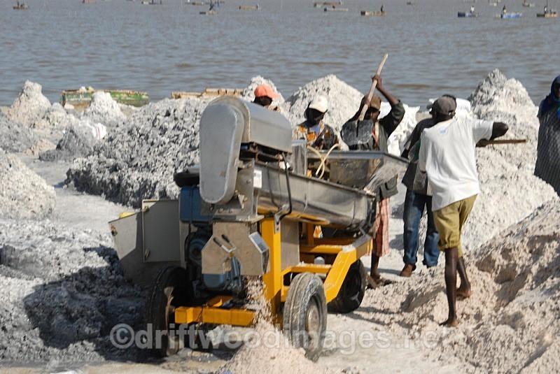 Senegal Lac Rose salt production 15 sifting salt - Salt Production in Senegal