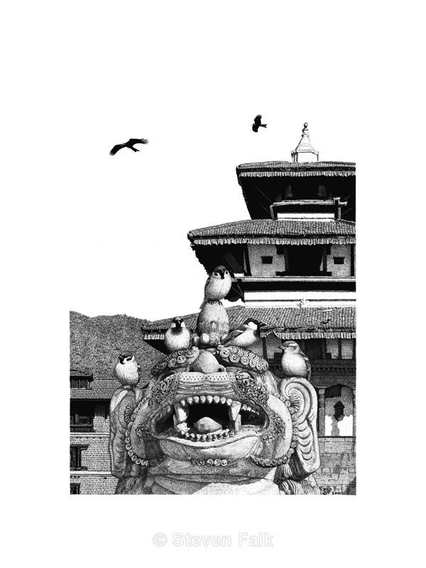 Kathmandu Sparrows - Birds and Mammals