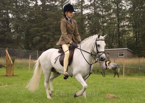 8 - Moniaive Horse Show 2008