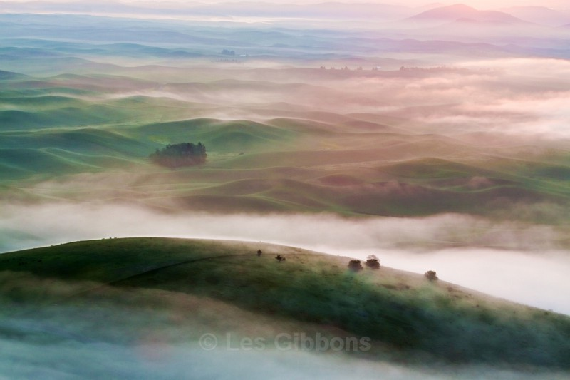 misty sunrise2 - Palouse