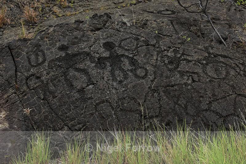Close view of Pu'u Loa Petroglyphs, Hawaii Volcanoes National Park - Hawaiian Islands, USA