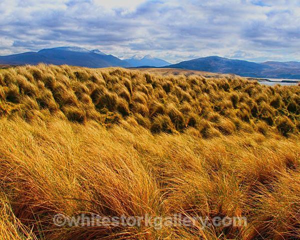 Sand Grass Mountains at Faraid Head - Scottish Highlands