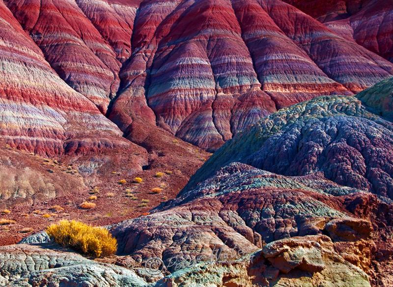 Vermilion Cliffs Arizona - USA