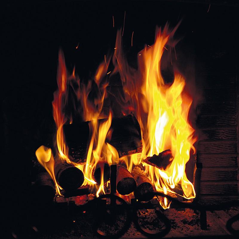 Fire Demon_0026 - Fire Element
