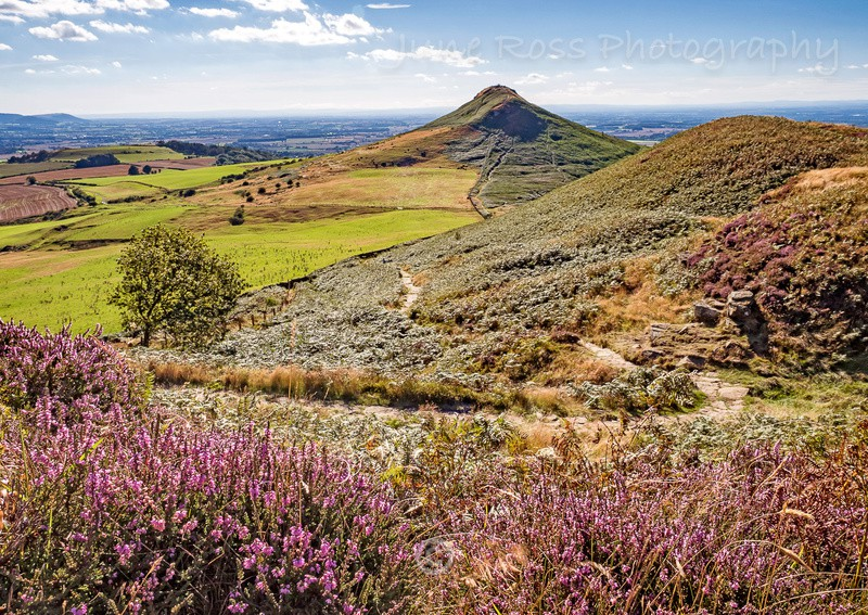 Summer at Roseberry Topping - North-East England