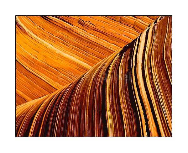 Textured Wave