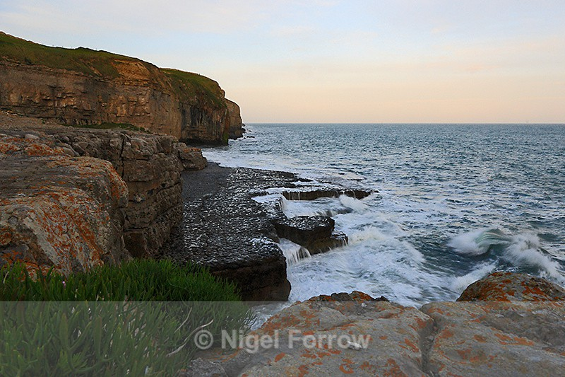 Dancing Ledge in late afternoon light - Dorset, England