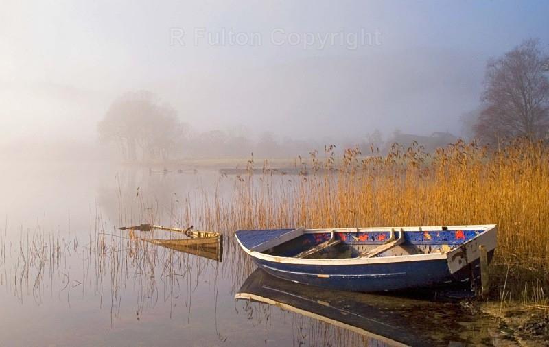 Clearing Fog - Landscapes