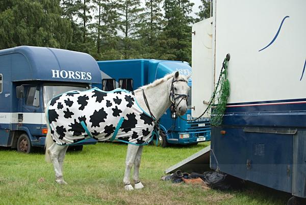 23 - Moniaive Horse Show 2010