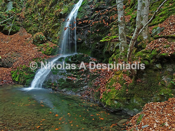 Waterfall in the Frakto forest 2 - Βόρεια Ελλάδα Ι North Greece