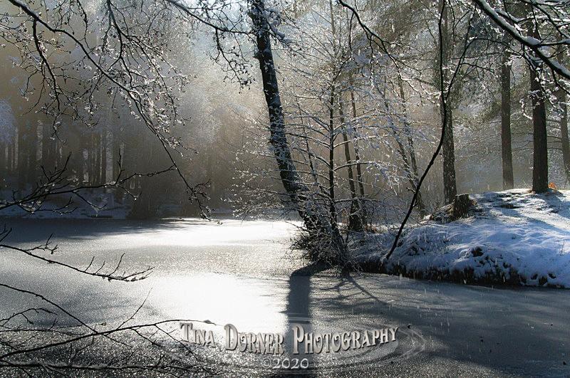 Old Snow, Brierley