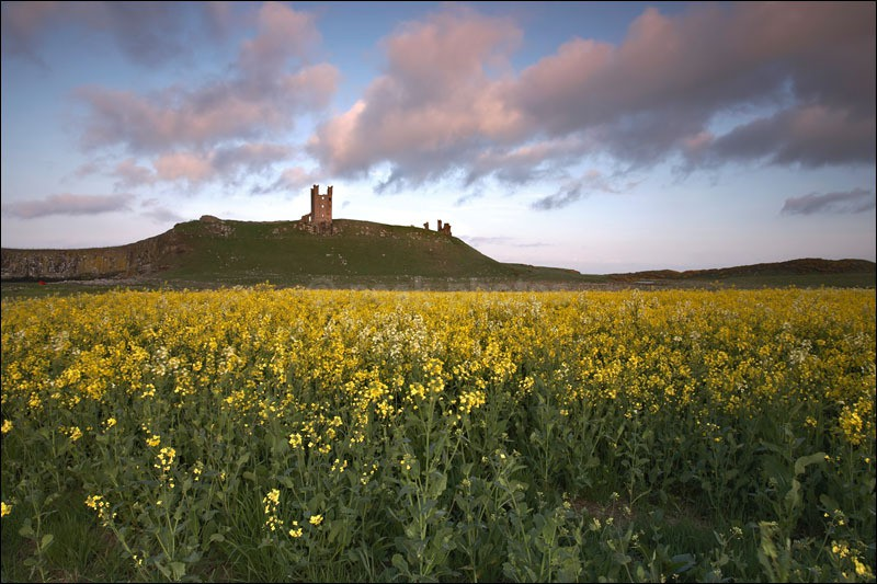 Dunstanburgh Castle - Photographs of England