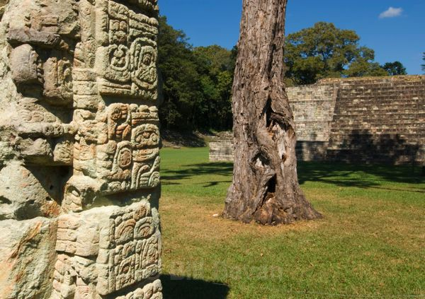 View of the Words - Copan