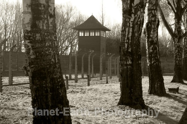 Who Goes There ? - Auschwitz