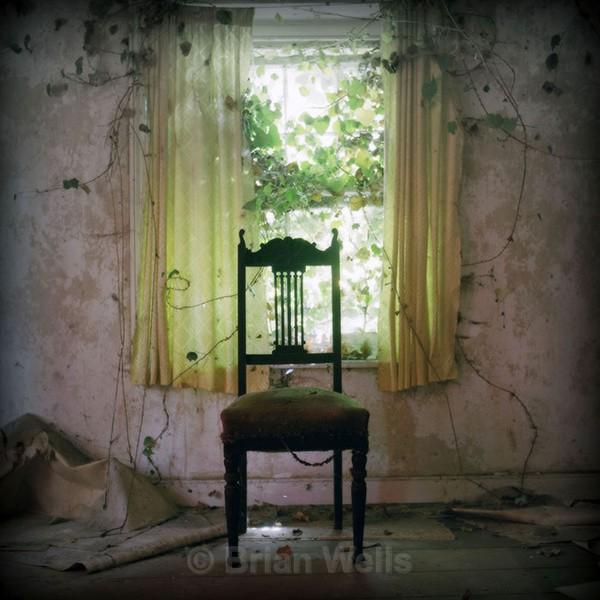 Wingback by the Window - 'Ye Olde Curiosity Shoppe'