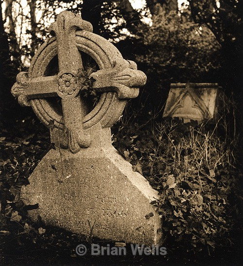 Gravestone with Ivy - The Black & White Gallery