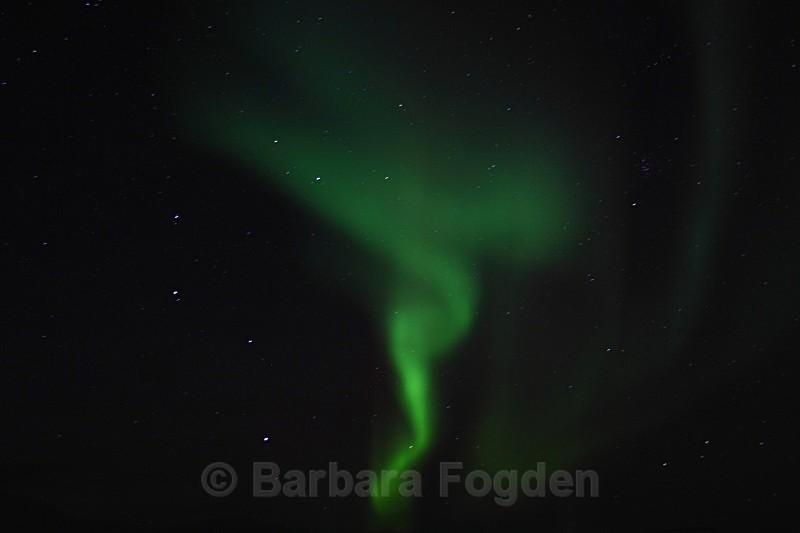 Northern Light in Adventdalen 5343 - Polar night