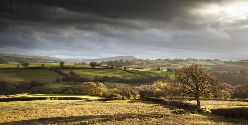 Chasing Shadows - nr Trecastle - Wales