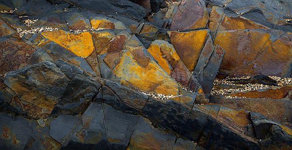 Colourful rocks at Crackington Haven - Cornwall