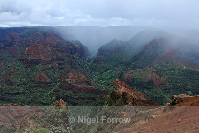 Misty Waimea Canyon, Kauai - Hawaiian Islands, USA