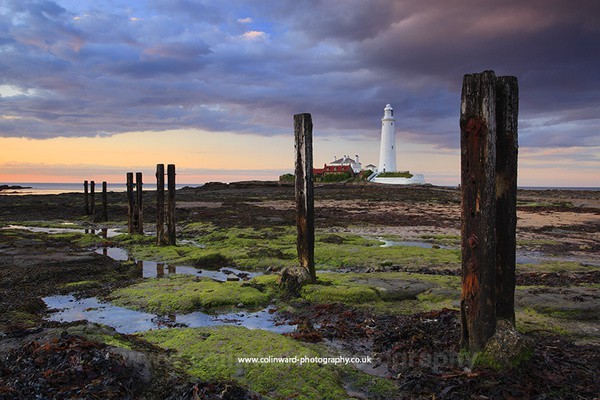St Marys Lighthouse, Whitley Bay. ref  8138 - Tyne and Wear