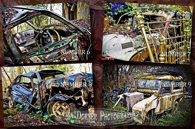 Abandoned cars by Tina Dorner Photography, Forest of Dean and Wye Valley, Gloucestershire