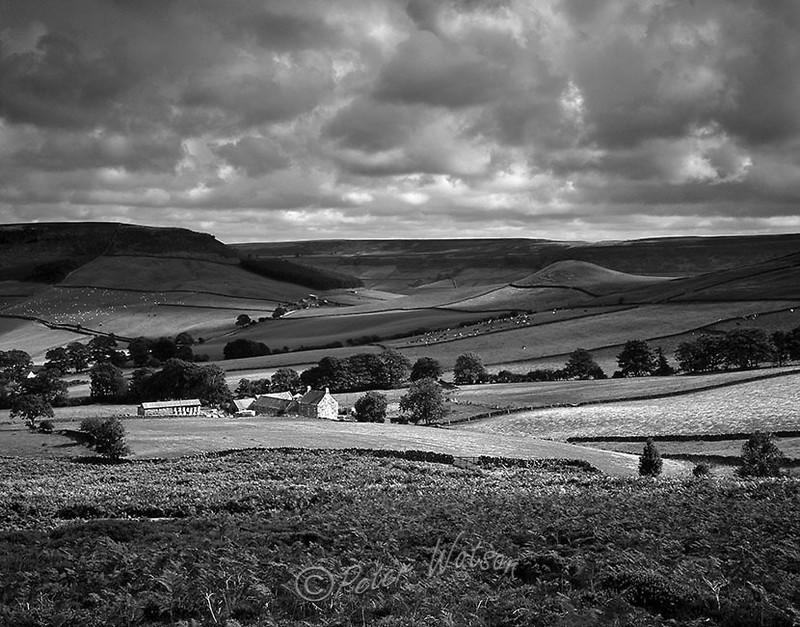 Denby Moor Yorkshire England - Monochrome