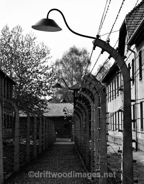Auschwitz fence and buildings 3 bw - Auschwitz/Birkenau