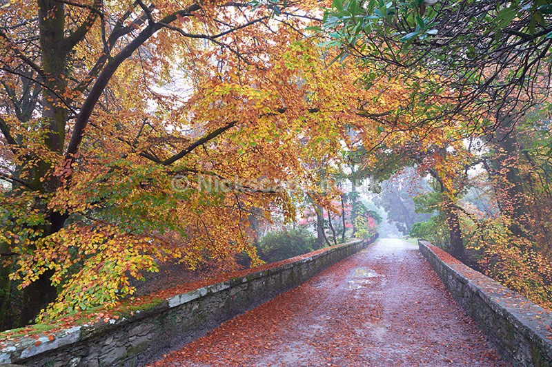Autumn at Rydal Hall - Lake District - Lake District National Park