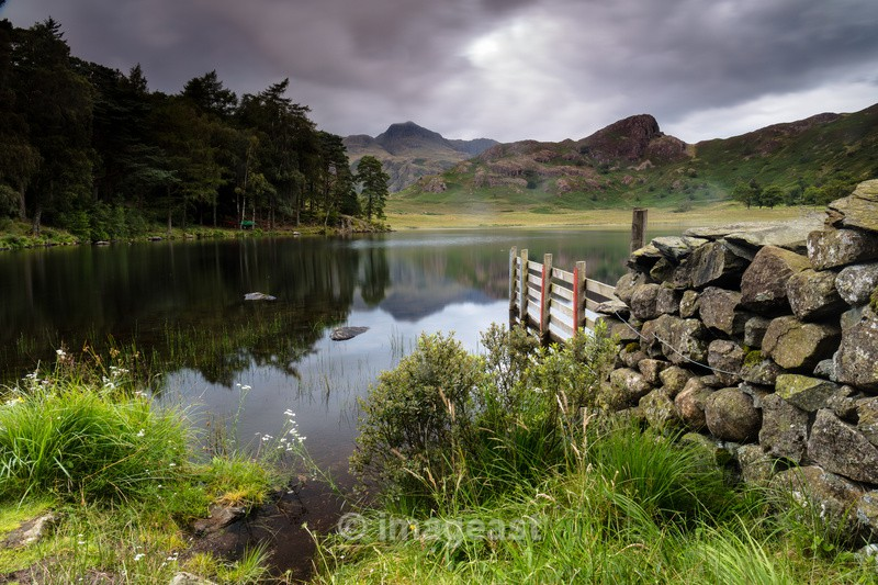Blea Tarn - The Gallery